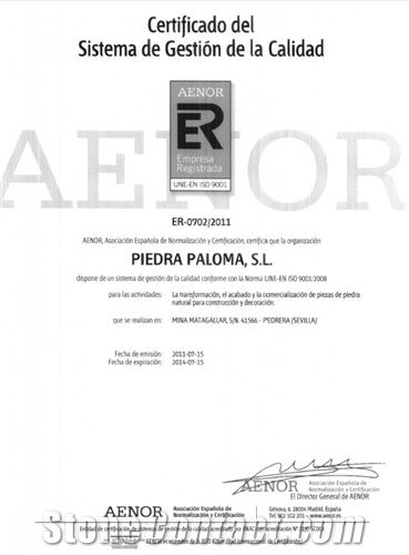 Certificado Aenor 9001 Gestión de calidad
