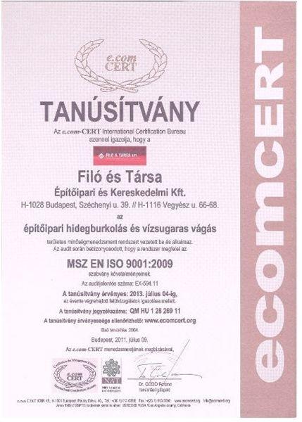 MSZ EN ISO 9001-2009