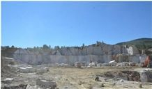 /picture/suppliers/20158/8370/olive-maroon-marble-olive-marone-light-marble-quarry-quarry1-3626B.JPG