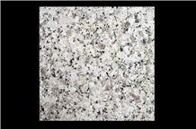G5137 Pear White Granite