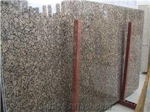 Polished Baltic Brown Granite Slabs Wholesale,Baltik Braun Granite Slabs,Brown Baltic Granite,Bruno Baltico Granite Floor Covering Slabs,Castanho Verdoso Granite Slabs