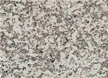 Branco Coral Granite Polished Tiles, Slabs, Grey Granite Floor Tiles, Wall Tiles
