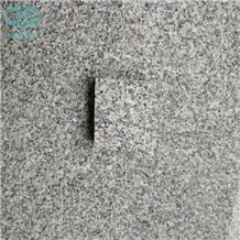 G603 Chinese Light Grey,Blanco Gamma,Padang White,Bacuo White,Crystal Grey,Sesame White Granite,Salt & Pepper Polished,Flamed Granite Tiles for Wall Covering/Granite Flooring Covering