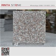 G664 Cherry Brown Luoyuan Red Granite Royal Pink Granite Pink Porno Granite Bainbrook Brown