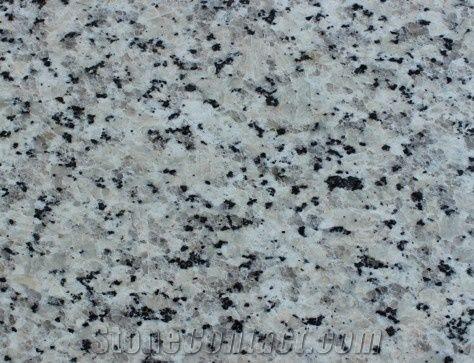 White Pearl Granite Slabs from Saudi Arabia - StoneContact