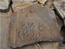 Dendrite Ferns Irregular Flagstone