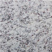 Branco Dallas - Dallas White Granite Slabs