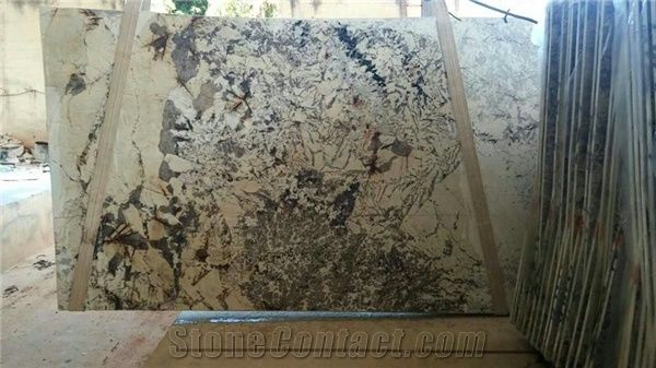 Exotic Copenhagen Granite Slabs Tiles White Polished