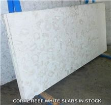 Coral Reef White