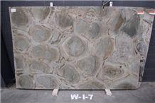 Turtle Green Quartzite Polished Slabs