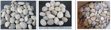 China Natural Pebble Stone, River Stone, Gravel, Polished, Honed, Tumbled Pebble, White, Mix Color, 7-10mm, 10-14mm, 16-20mm, 20-30mm, 30-40mm,Mixed Pebble Stone, River Stone