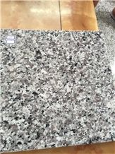 Fargo Grey Granite, China Swan White Granite Polished Tile and Slab for Wall/Floor Covering