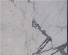 Silver White Statuario Venato Marble with Italy Snow White Marble Tile & Slab