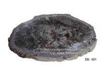 Indonesia Petrified Wood Round Slab