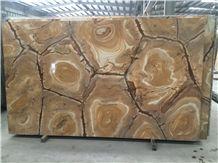 Stone Wood Quartzite Slabs & Tiles, Brazil Yellow Quartzite