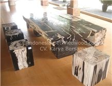 Petrified Wood Coffee Tables & Dinning Tables