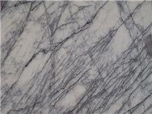 Turkey White Color Paradise Bird Marble Slabs Polished Surface