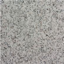 Hot Sale Polished G365 White Granite/Shandong White Seasame/Pitaya White