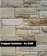 Creggaun Sandstone Pointed and Dry Build Tiles