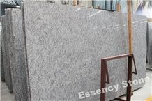 Verde Argento Granite Big Slabs,Gneiss Di Montestrutto Granite