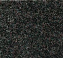 Wild Rose Granite Building Floor Paving Tiles,Floor Pavers,Black Wild Rose Granite Floor Covering