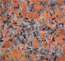 G562 Maple Red Granite Tiles for Flooring, China Red Granite