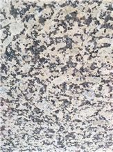 Caledonia Gold Granite Slabs and Tiles,New Giallo Atlantico Granite Slabs and Tiles, Golden Leaf