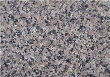 Classic Brown Xinjiang Granite,Xinjiang Brown Granite Slabs & Tiles
