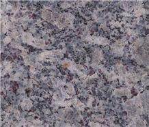 Eurasian Blue Flower Granite