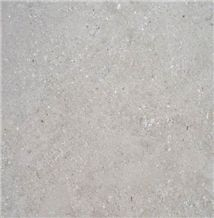 San Sebastian Gris France Grey Coral Seashell Stone Honed Tiles, Machine Cutting Slabs for Floor Paving Pattern
