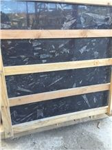 Black Fossil Tiles, Nero Fossil Marble Tiles, Ocean Jura Fossil Tiles, Morocco Fossil Marble Tiles