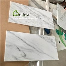 High End Elegant White Marble with Black Veins Wall and Floor Tile