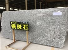 Italy Silver Brown /Dorato Valmalenco Granite Slab/Floor/Wall