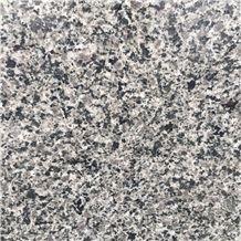 New Zealand Grey Granite,New Zealand Gray Granite,Sesame Grey Granite