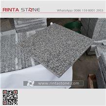 Rosa Beta G623 Granite Cheaper Gray Stone China Crystal Grey Bianco Sardo White Stone Tiles Slabs for Countertops Kerbstone Paving Stone Padang White Gray Silvery G3523 New