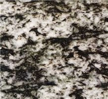 Blanco Platinum, Granite Tiles & Slabs, Granite Wall and Floor Covering, Granite Floor and Wall Tiles, China White Granite