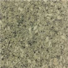 Tianshan Green Granite Slabs Tiles, China Green Granite