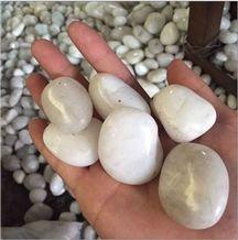 Natural White River Pebble Stone Pebbles