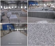 Our Own Quarry and Factory New G603 Granite Tiles /Hubei G603 / Bianco Crystal Granite /China Bianco Sardo Grey Granite Tiles and Slabs