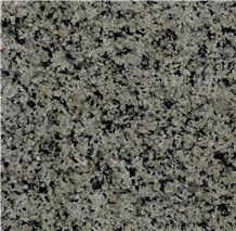 Silver Green Granite Tiles, Saudi Arabia Green Granite