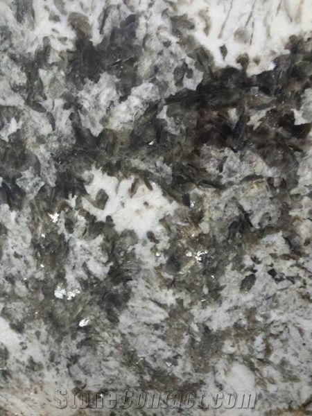 Dahlia White Granite From United States Stonecontact Com
