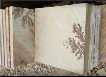 Fossil Sandstone Sawn Cut Pavers