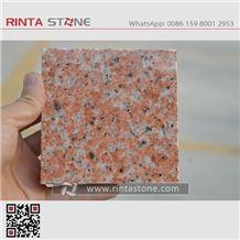 Salisbury Pink Granite Red Sally Camelia Bethel Carolina New Tianshan Guilin Shalishi Rosa Porrino Rose Rosy Slabs Tiles Countertops Royal Roza