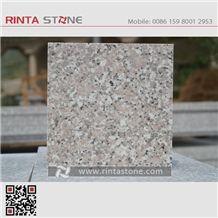Xili Chili Red G498 G304 G72 Madam Pink Granite Stone Sai Lai Rosa Porrino Rose Huidong Maple Slabs Tiles