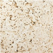 Colonial Coral Stone Tiles & Slabs