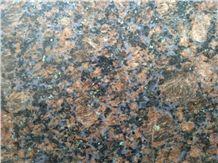 Tan Blue Granite Slabs, Tiles