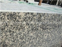 Versatile Leopard Skin Grey Granite Slabs, Tiles