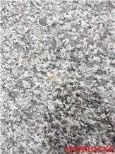 G623 China Bianco Sardo Granite Polished Tile