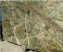 Polished India Rainforest Green Marble Slabs Tiles