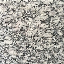 Sea Wave Flower G418 Spray White Granite Tile